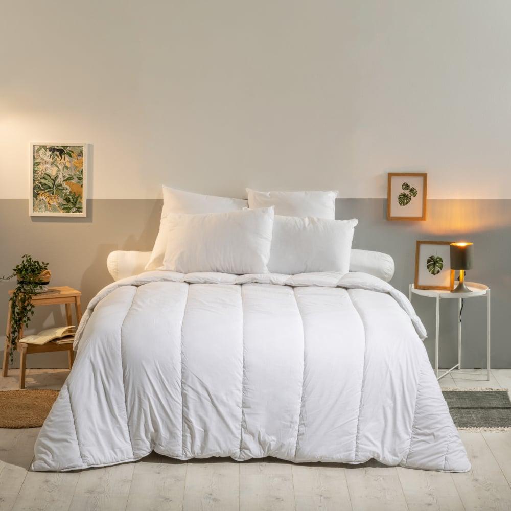 oreiller anti punaise de lit